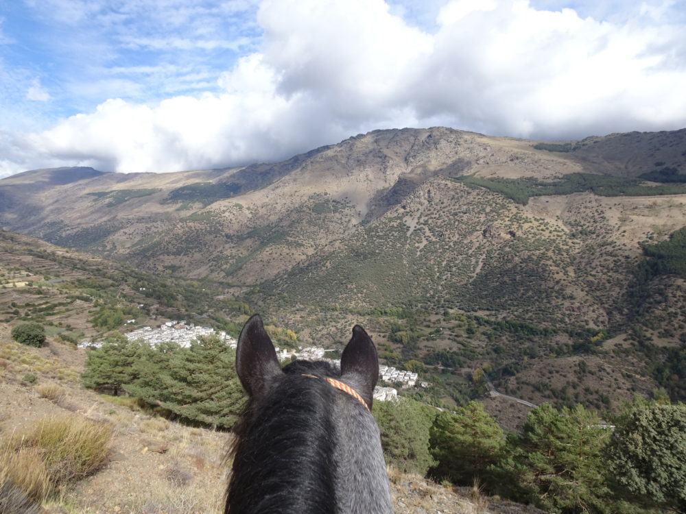 Sierra Nevada, What I loved about the Sierra Nevada, In The Saddle