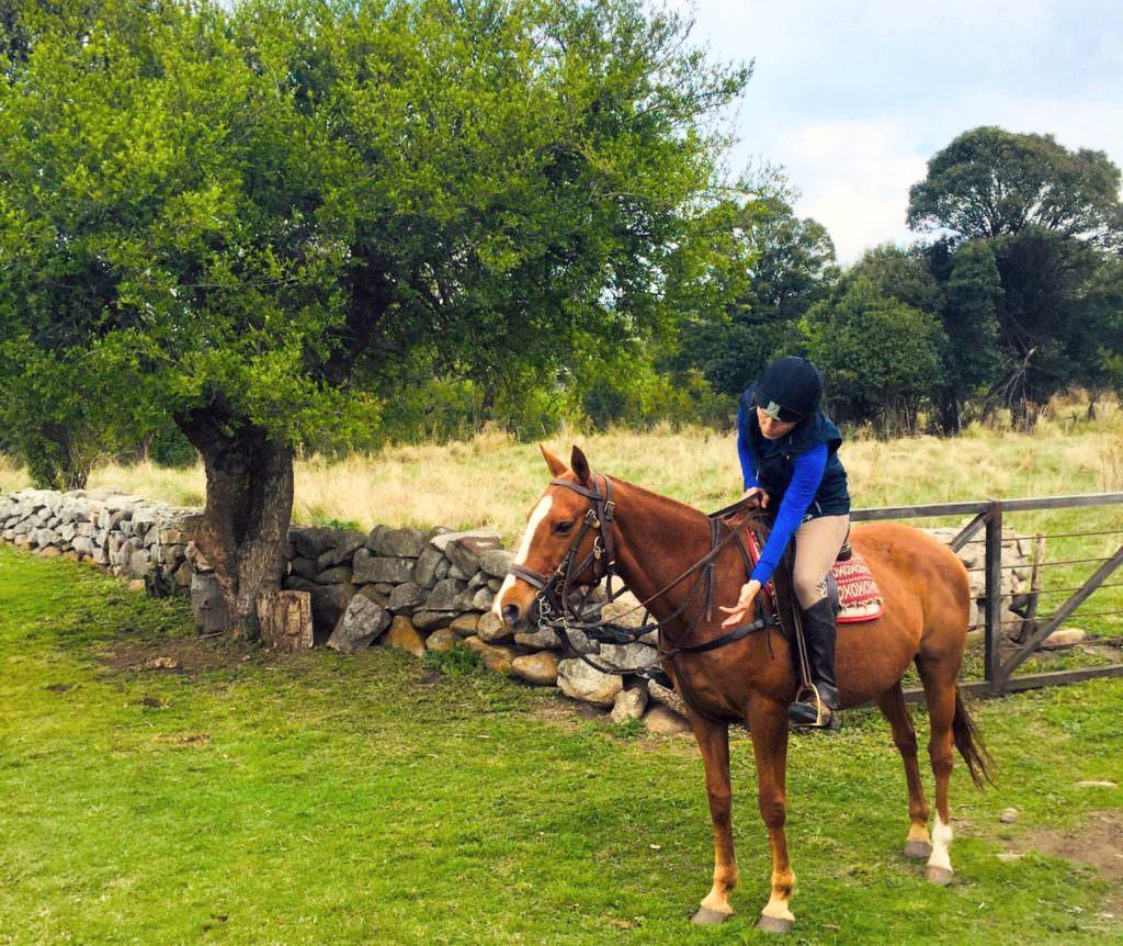 Riding Horses at Los Potreros, Argentina. After polo