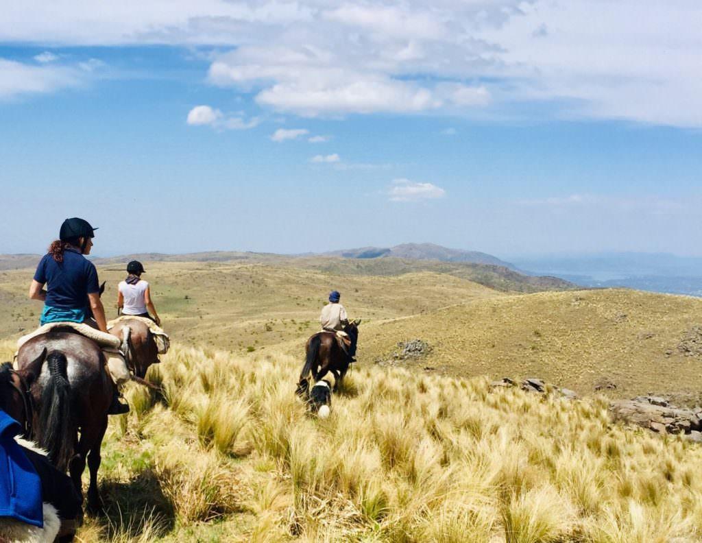 Riding Horses at Los Potreros, Argentina.