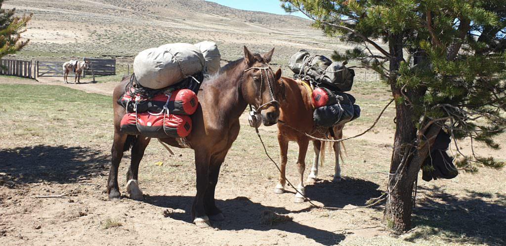 Grande Traversée, My Grand Adventure on the Grande Traversée, In The Saddle