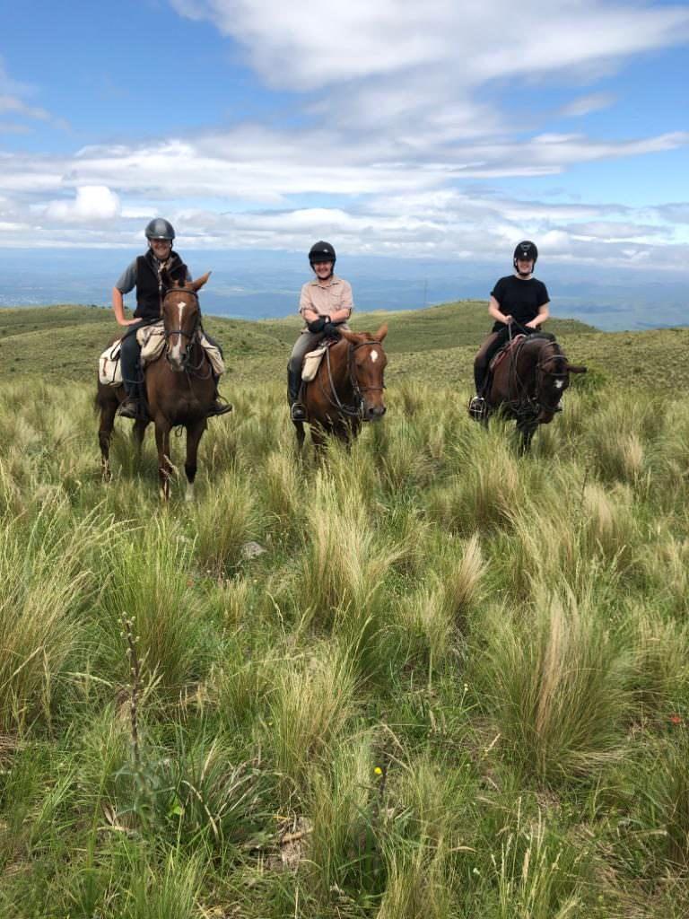 chevaux los potreros